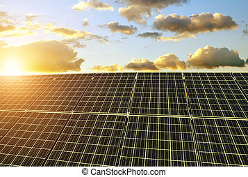 Solar panels at sunset.