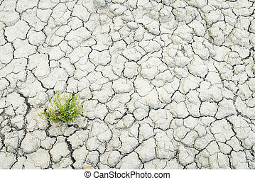 dry and cracked desert soil backgroiund