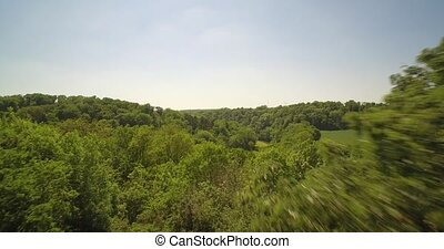Aerial, Slow flight Above A Beautiful German Forest At...