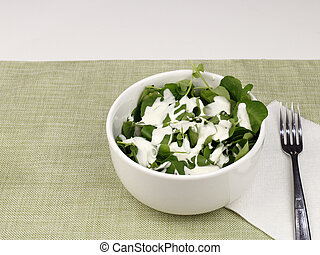 Healthy Watercress and Blue Cheese Salad - One white bowl of...