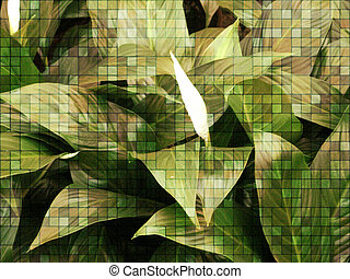 A beautiful ornamental plant - Background or texture with an...