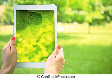 Sunny summer scene - Summer background. White tablet in hand...