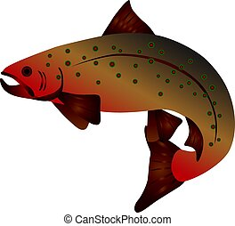 Brook Trout Color Illustration