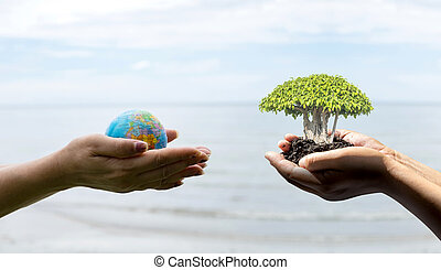 Human hand holding global in soil with little green tree. -...