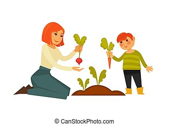 Mother and small son pulling carrot and beet from ground