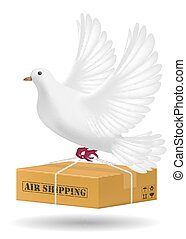 white pigeon flying with air shipping delivery
