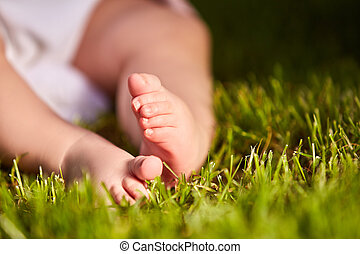 Small baby feet on the green grass at summer sunshiny day in...