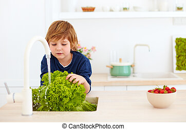 young boy, kid washing lettuce leaves under tap water in the...