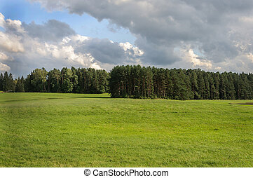 Country landscape with meadow and forest - Meadow and forest...