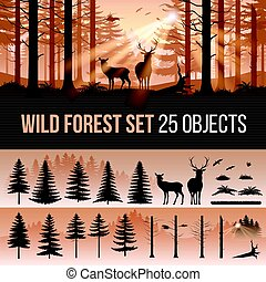 Coniferous Forest - Evergreen Forest Set of Different...