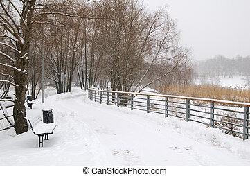 Avenue in the winter