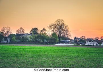 Rural landscape at sunset.