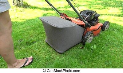 Gardener woman in shorts push lawn mower cutting meadow...