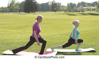 Senior fit women practicing yoga in the park - Two...