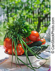 Tomatoes, cucumbers, onions, parsley and dill in a white plate on the table