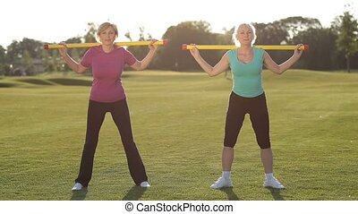 Attractive adult fitness women working out in park -...