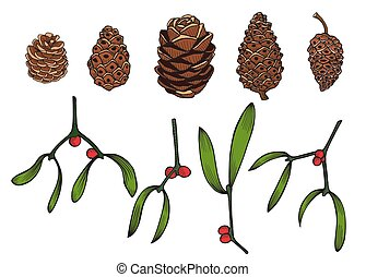 Hand drawn Pine cone - Set of Hand drawn Pine cone and a...