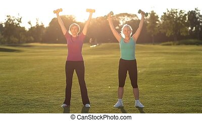 Charming ladies working out with dumbbells in park