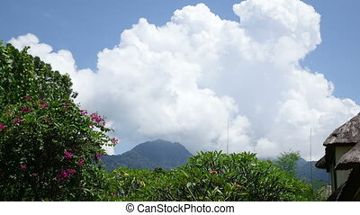 Indonesia, Bali, clouds move over the mountain and a tropical garden,Time lapse