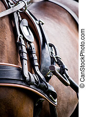 Close up of horse drawn carriage tack in summer