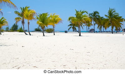 Palm trees on white sand beach. Playa Sirena. Cayo Largo....