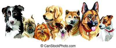 Dog breeds set - Set of colorful vector portraits of...