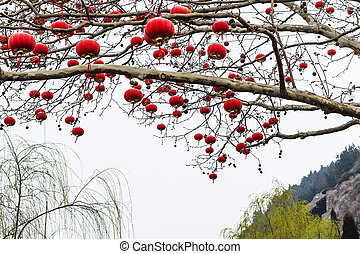 chinese red lanterns of tree branches in spring - travel to...