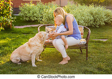 Mother holding baby son and playing with labrador dog in the...
