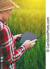Female farmer using tablet computer in wheat crop field,...