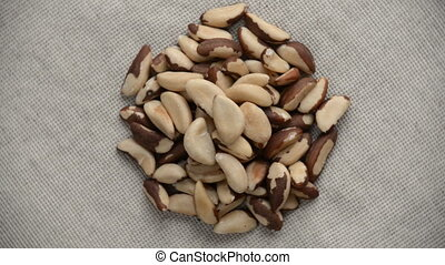 The brazil nut rotates on the turntable. - Nuts brazil turn...