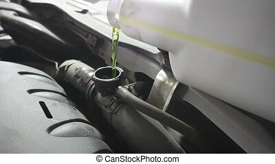 Pouring antifreeze to the car radiator