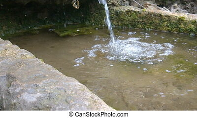 Pure natural water source - source of spring water, Spring...