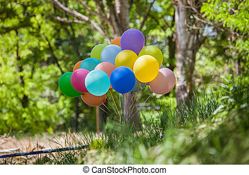 Holiday balloons in the clearing.