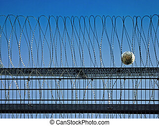 barbed wire with captured ball