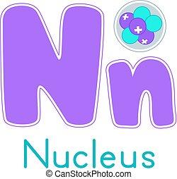 física, núcleo, carta,  N
