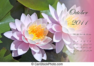 October 2011 - Page of 2011 calendar for October, with white...