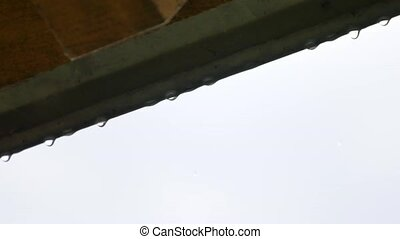 Rain drops falling from the roof in a row weather natural...