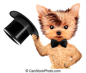 Funny gentleman doggy with black bow and cylinder hat....