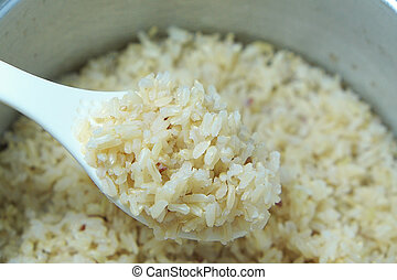 Cooked brown rice.