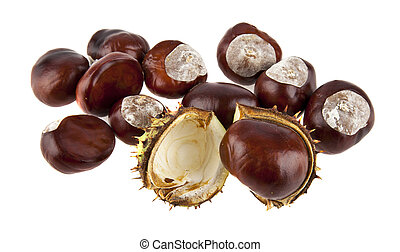 chestnuts isolated on white background closeup