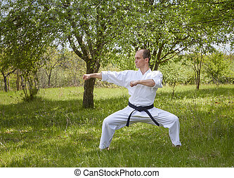 Against the background of nature, a master with a black belt beats two blows with his hands