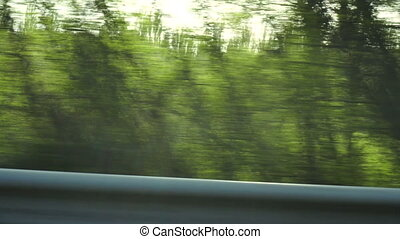 road view of green fields and trees on high speed
