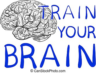 'Train your brain' text with hand drawn brain sketch. VECTOR illustration, blue handwritten letters.