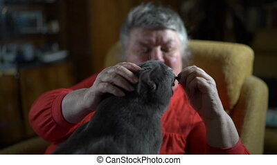 Elderly woman in an armchair giving her cat a tasty treat....