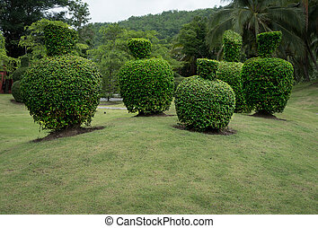 Green trimmed bush with green grass