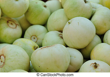 Honeydew Melon selling at agriculture fair