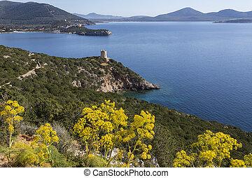 Headland of Capo Caccia - Sardinia - Italy - View from the...