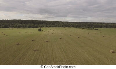 Rolls of haystacks on the field.Aerial video. - Haystacks...