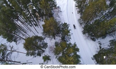 A man on a snowmobile in the woods. Winter sports and...