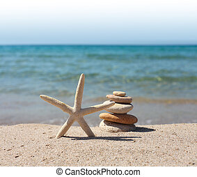 starfish, stones on beach sand